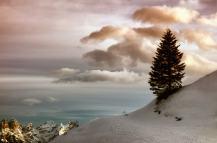 Ski Area Civetta (BL)